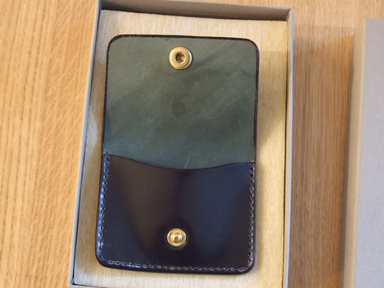 Alden Coin Case 3