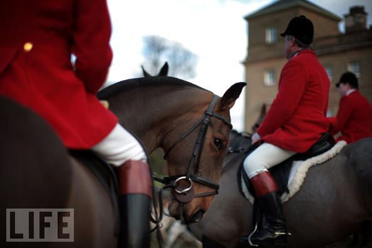 boxing_day_fox_hunt_1