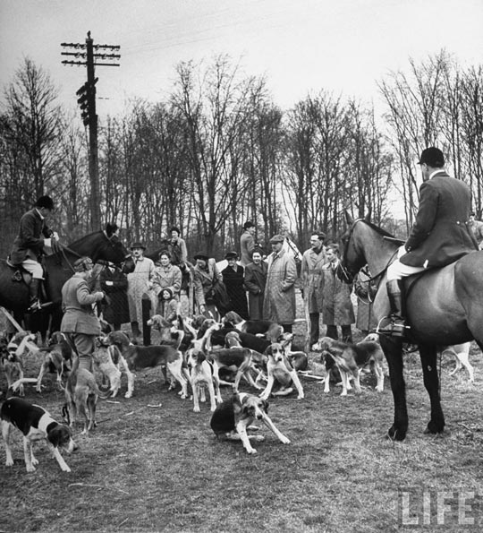 boxing_day_fox_hunt_20