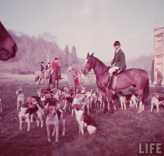 boxing_day_fox_hunt_27