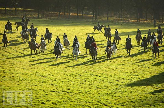 boxing_day_fox_hunt_4