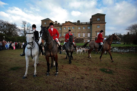 boxing_day_fox_hunt_5