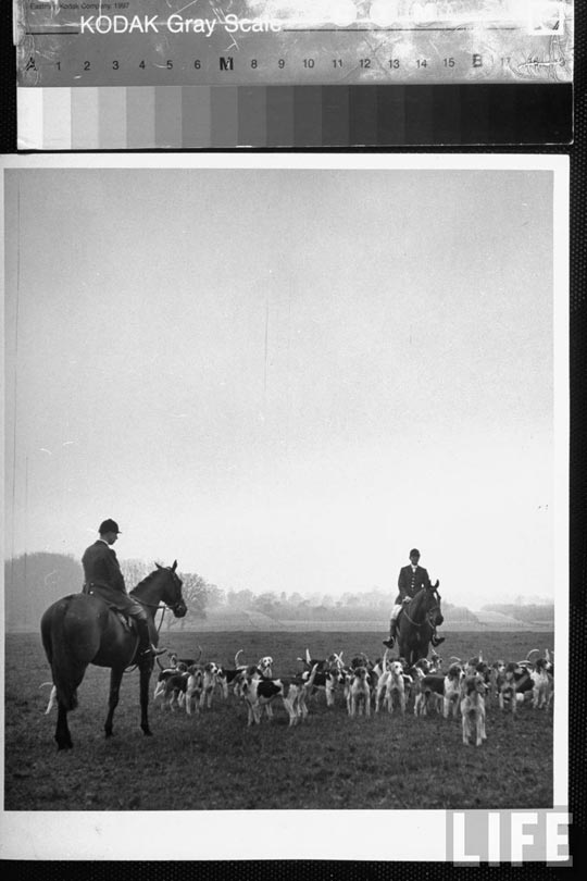 boxing_day_fox_hunt_9