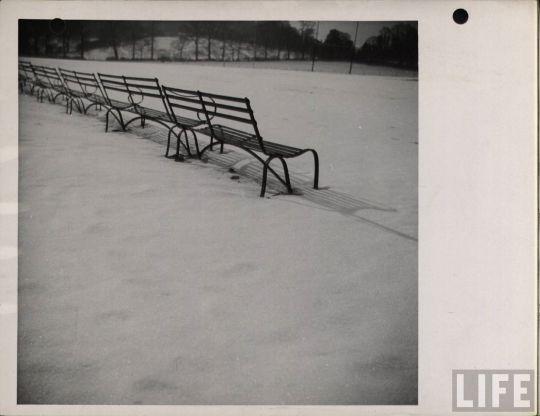 life_snow_scenes_02