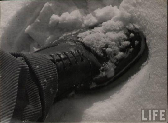 life_snow_scenes_06