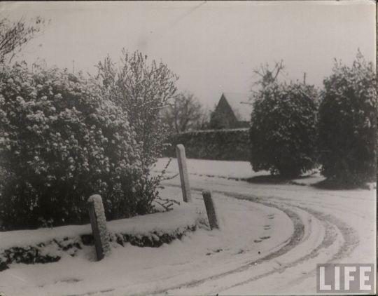 life_snow_scenes_25