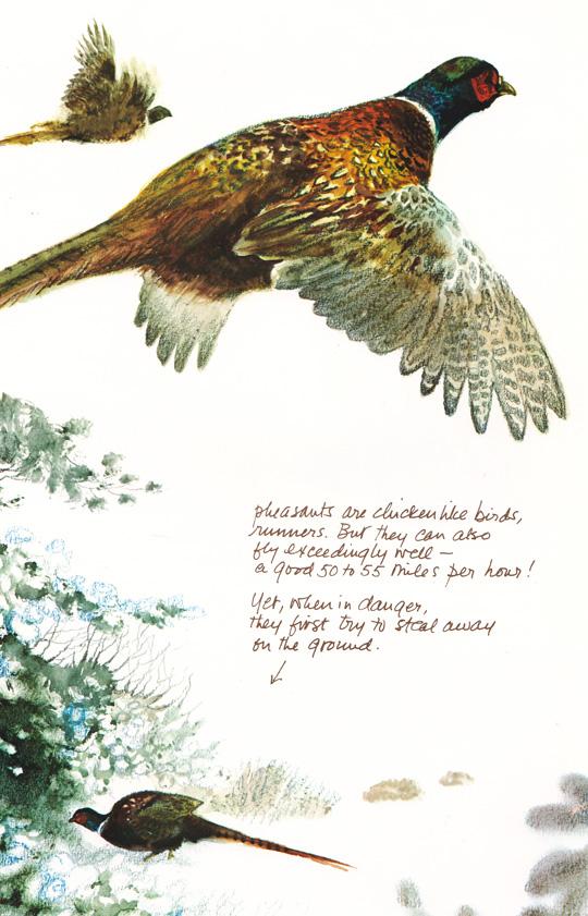Poortvliet_02