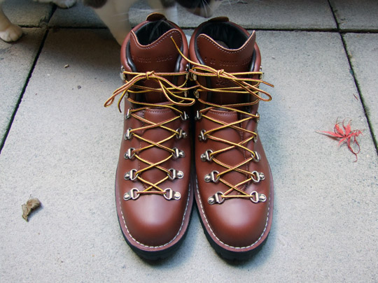 Danner 30810X Mountain Light II Boots | Mister Crew
